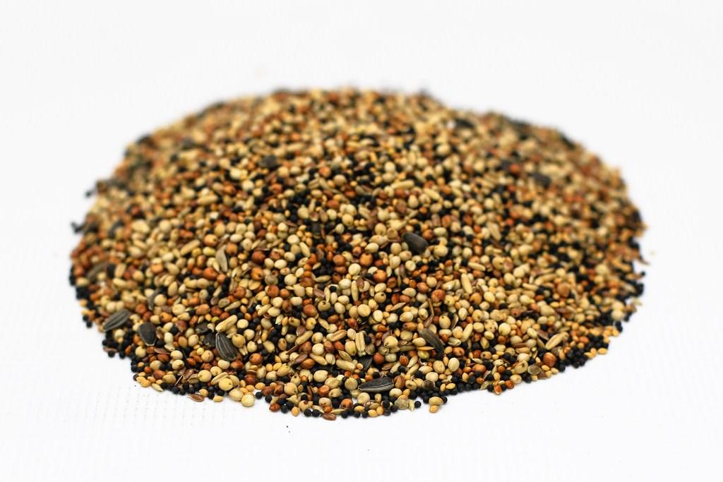 DN z drobnych nasion oleistych
