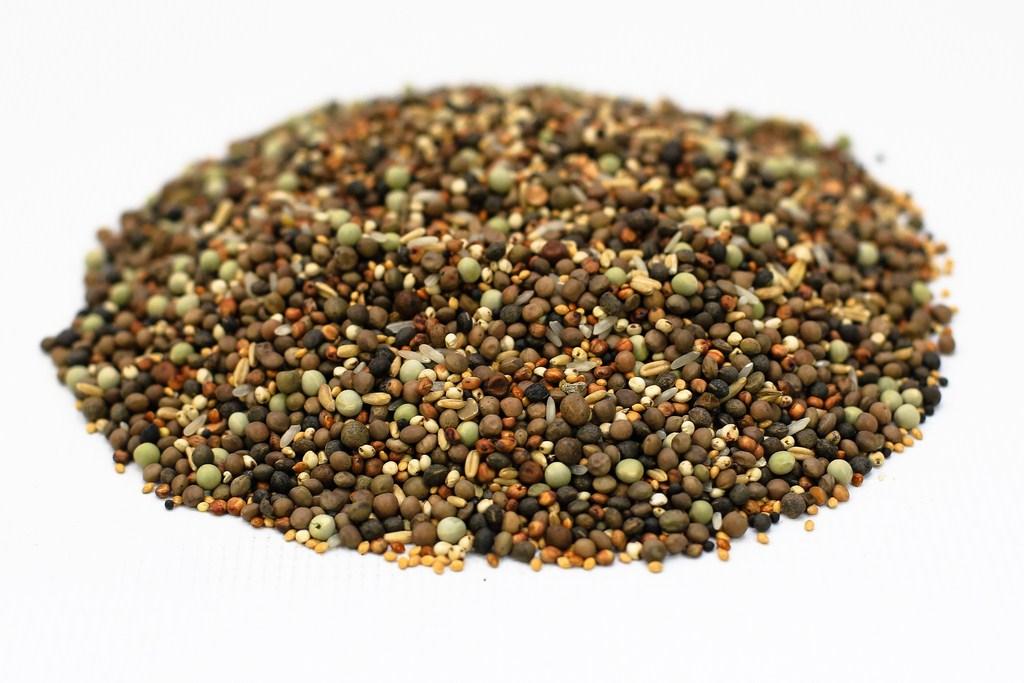 K0 z sortowanych drobnych nasion